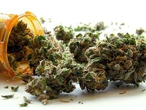 projectknow-shutter170303738-marijuana-hash